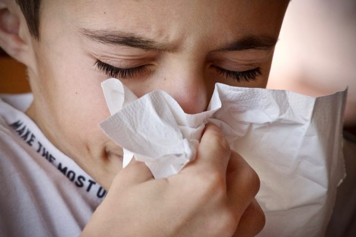 coping with allergy season